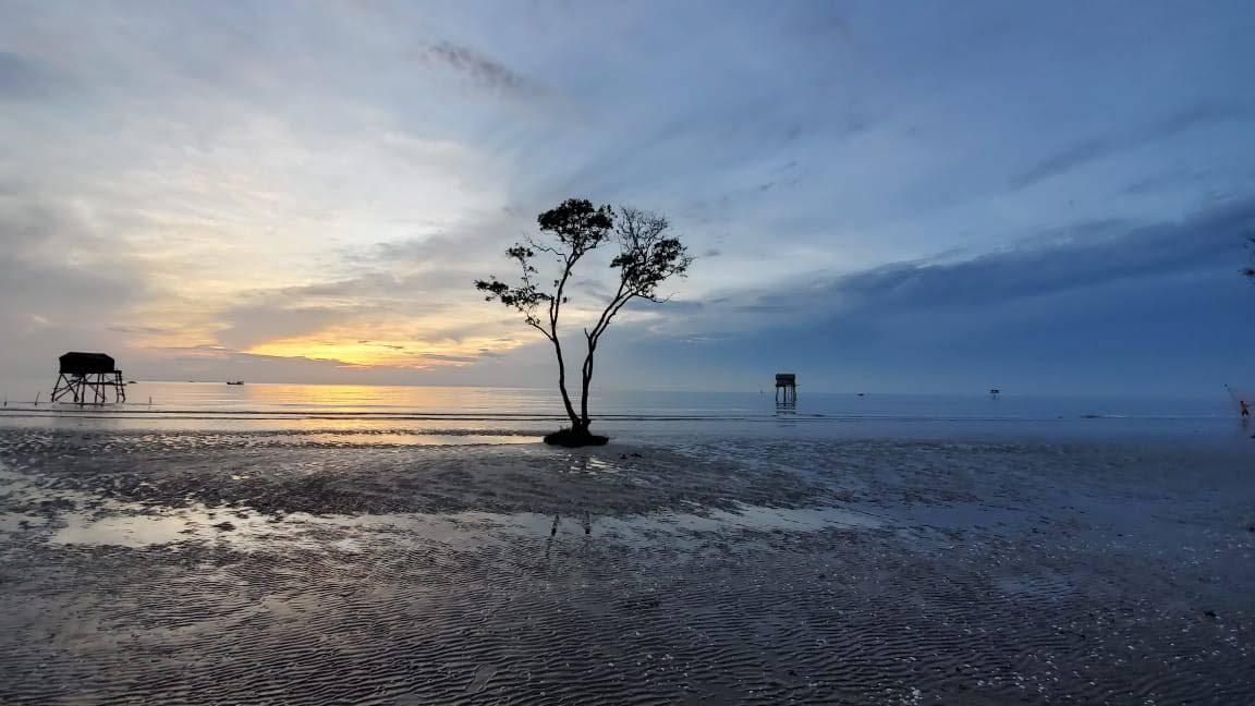 Vietnamese horizon